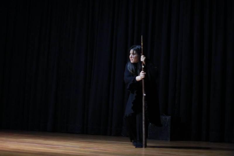 Representación del Colegio de Nuestra Señora del Pilar Chapinero, Bogotá (2017)