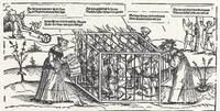 La jaula de los necios, grabado de Schoen (siglo XVI)
