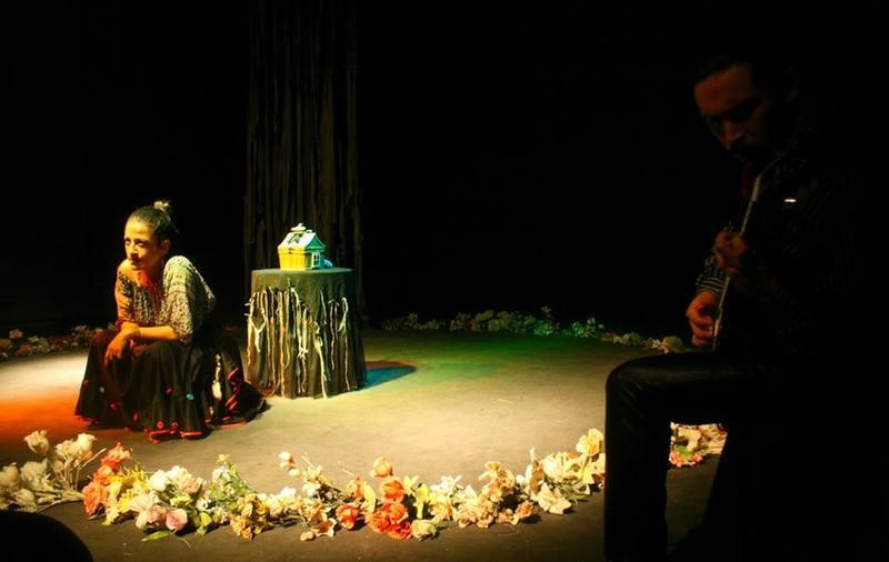 Representación de la Casa de las Artes, Coquimbo, Chile, 2014