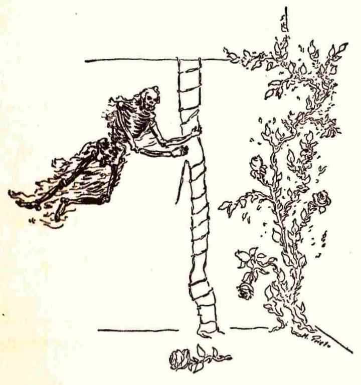 Ilustración tercera de la contraportada de la edición de México (1947)