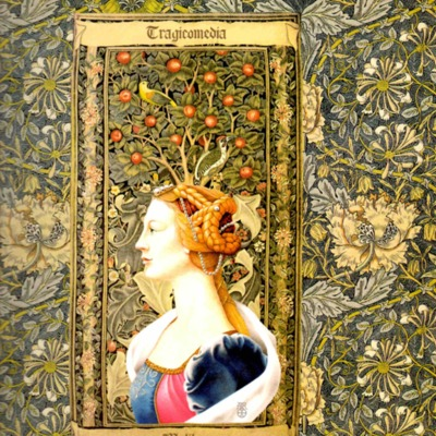 Segunda ilustración, de Melibea, de la encuadernación de la edición de Madrid, 2005