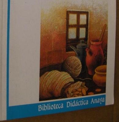 Portada de la edición de Anaya, 2004